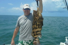 small-goliath-grouper